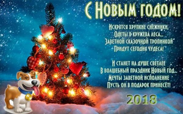 pozhelaniya-s-novym-2018-godom-22